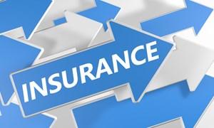Thị trường bảo hiểm sẽ duy trì đà tăng trưởng trong năm 2020