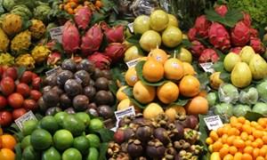 Làm gì để xuất khẩu nhanh trái cây sang Trung Quốc, tránh ùn ứ dịp Tết?