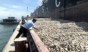 Tổng cục Hải quan phản hồi về việc khai báo mã số hàng hóa với đá vôi xuất khẩu