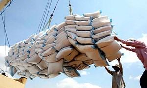 Gỡ khó cho gạo xuất khẩu