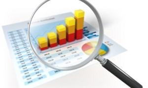 Một số vấn đề về tổ chức kiểm toán nợ công