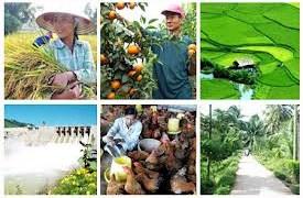 Xây dựng quy hoạch dài hạn thúc đẩy tái cơ cấu nông nghiệp