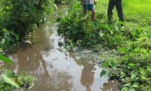 Xử phạt nhà máy gây ô nhiễm môi trường 260 triệu đồng