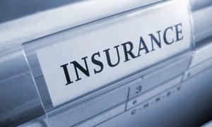 Dấu mốc trưởng thành của bảo hiểm Việt Nam