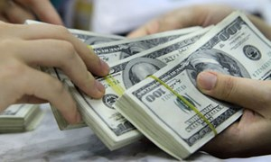 Chính sách tỷ giá đối với phát triển kinh tế Việt Nam giai đoạn hiện nay