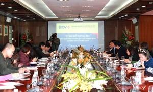 BIDV: Dấu ấn kinh doanh 2013