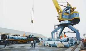 Xuất nhập khẩu: Nhộn nhịp mở hàng đầu năm