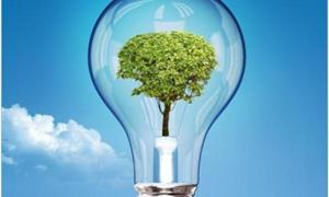 Tăng trưởng kinh tế với an ninh năng lượng và vấn đề an ninh năng lượng của Việt Nam