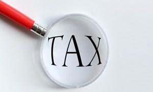 Nhiều điểm mới trong hỗ trợ quyết toán thuế năm 2013