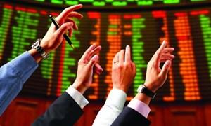 Vai trò của nhà đầu tư tổ chức đối với sự phát triển thị trường chứng khoán Việt Nam