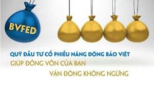 """Năm 2013, Công ty Quản lý Quỹ Bảo Việt """"vươn ra biển lớn"""""""