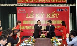 BIDV ký hợp đồng hạn mức tín dụng năm 2014 với Công ty TNHH một thành viên Đạm Ninh Bình