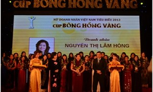 Phó Tổng Giám đốc Tổng Công ty Bảo Việt Nhân thọ nhận giải Nữ Doanh nhân Việt Nam tiêu biểu 2013