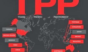 TPP - cơ hội để Việt Nam cải cách