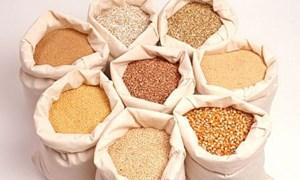 Áp thuế Giá trị gia tăng 5% đối với hàng nông sản là thức ăn chăn nuôi