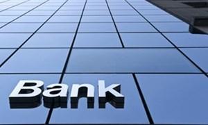 Năm 2014: Sự trỗi dậy của những ngân hàng nhỏ