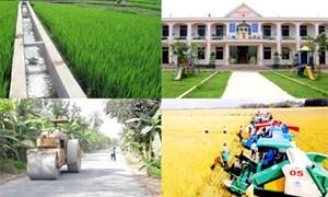 Đào tạo nguồn nhân lực, xây dựng nông thôn mới: Thực tiễn của TP. Hà Nội