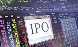 """Thị trường chứng khoán đón nhận """"làn sóng"""" đấu giá dồn dập"""