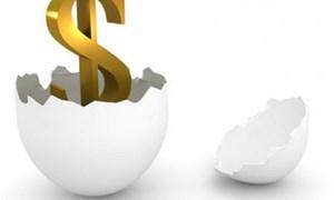 Vai trò vốn FDI còn mờ nhạt