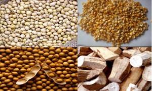 Không thu thuế Giá trị gia tăng với nguyên liệu nhập khẩu làm thức ăn chăn nuôi