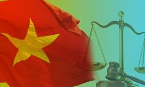 Vai trò của Chính phủ trong quá trình sửa đổi, bổ sung và tổ chức thi hành Hiến pháp
