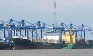 Tàu nước ngoài hoạt động nội địa có cần làm thủ tục hải quan?