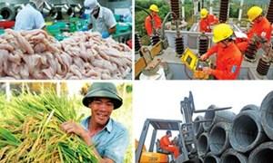 Niên giám Ireland: Việt Nam là một thị trường năng động
