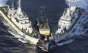 Quốc tế hóa vấn đề Biển Đông, Trung Quốc đang mua dây buộc mình