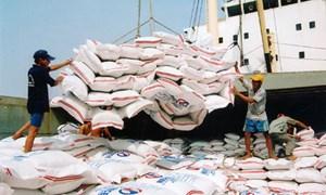 Xuất khẩu gạo phụ thuộc Trung Quốc: Thói quen