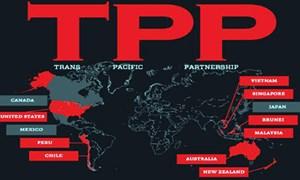 Hiệp định TPP: Cơ hội và thách thức trong tuân thủ các quy định về thuế quan và phi thuế quan