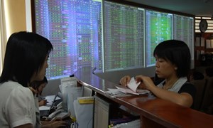 Hơn 50% số lượng cổ phiếu niêm yết tăng giá
