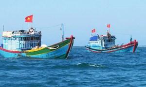 Để chính sách hỗ trợ ngư dân hiệu quả