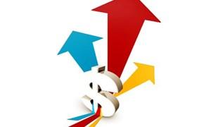 Mối quan hệ giữa đầu tư trực tiếp nước ngoài, đầu tư trong nước và tăng trưởng kinh tế