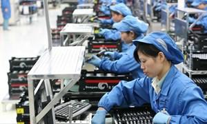 Những tín hiệu tích cực từ thị trường xuất khẩu lao động