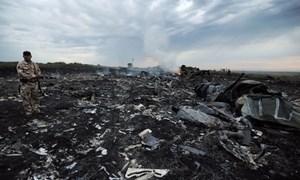 Tổng thống Ukraine nắm bằng chứng về giàn phóng tên lửa bắn máy bay MH17