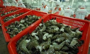 Thông báo về mã số hải quan đối với sản phẩm thủy hải sản xuất khẩu vào EU