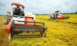 Tái cơ cấu nông nghiệp phải bắt đầu từ nút thắt tư duy - kinh phí - thị trường