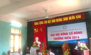 Ngày 12/9, cổ phiếu NDF sẽ chính thức lên sàn Hà Nội