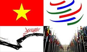 4 lý do kinh tế đối ngoại có thành tựu