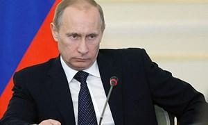 Trả đũa phương Tây: Sau nông sản, Nga chọn gì?