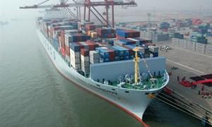 Doanh nghiệp vận tải biển có tín hiệu tích cực