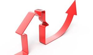 Thị trường bất động sản đang dần hồi phục