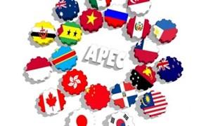 Việt Nam chủ động đóng góp trong hợp tác APEC
