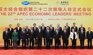 Hội nghị Cấp cao APEC lần thứ 22 nhất trí thúc đẩy liên kết kinh tế khu vực
