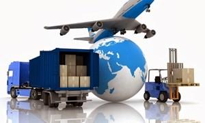 Giá cước vận tải có thể giảm từ 5,6 - 8%