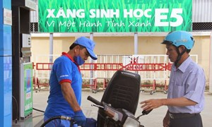 Hà Nội bán xăng sinh học E5 tại 47 cửa hàng