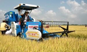 Phát triển công nghiệp nông thôn trong chuyển dịch cơ cấu kinh tế địa phương