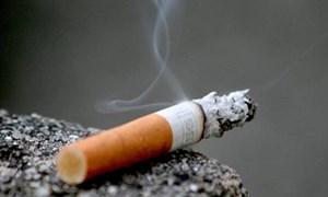 Gánh nặng bệnh tật và tổn thất kinh tế do thuốc lá