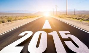 Triển vọng 2015: Kinh tế tiếp tục xu thế phục hồi