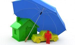 11.000 tỷ đồng/năm và vai trò của bảo hiểm tài sản công